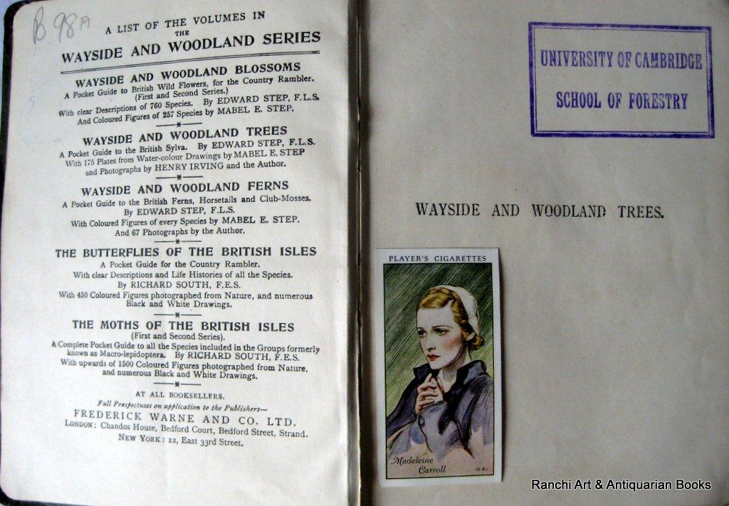 Wayside and Woodland Trees, Edward Step, FLS, Frederick Warne c1904. Detail.