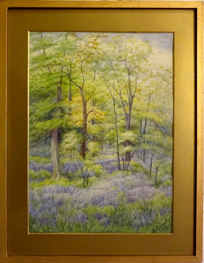 In the Bluebell Wood, watercolour, signed MJ Colwell 1922. Framed.