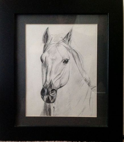 Drawing of a Horse, pencil on paper, signed and dated Christine 2012. Frame