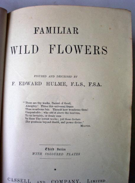 Familiar Wild Flowers Third Series Vol III-IV-V (Combined Vol II)