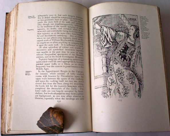p232 Chap IX with facing illustration.