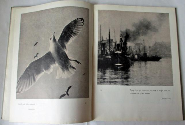 Sample pages 30/31 Seagulls and Ships in Harbour.