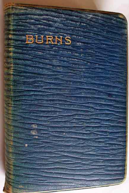 The poetical works of Robert Burns.