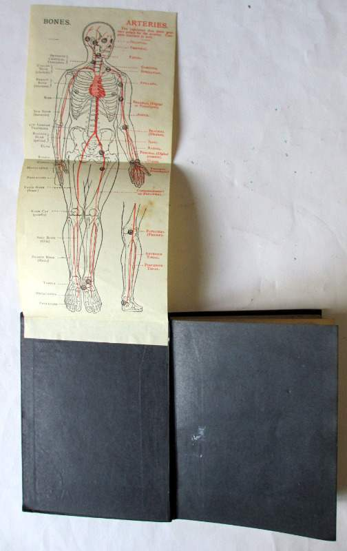 First Aid to the Injured by James Cantlie, 23rd Edition, 1914. Folding diagram.