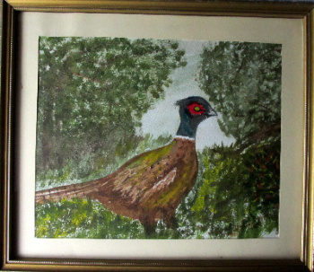 The Pheasant, watercolour on paper, unsigned. c1980.