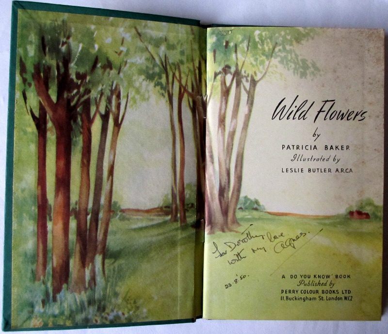 Wild Flowers by Patricia Baker, 1950.