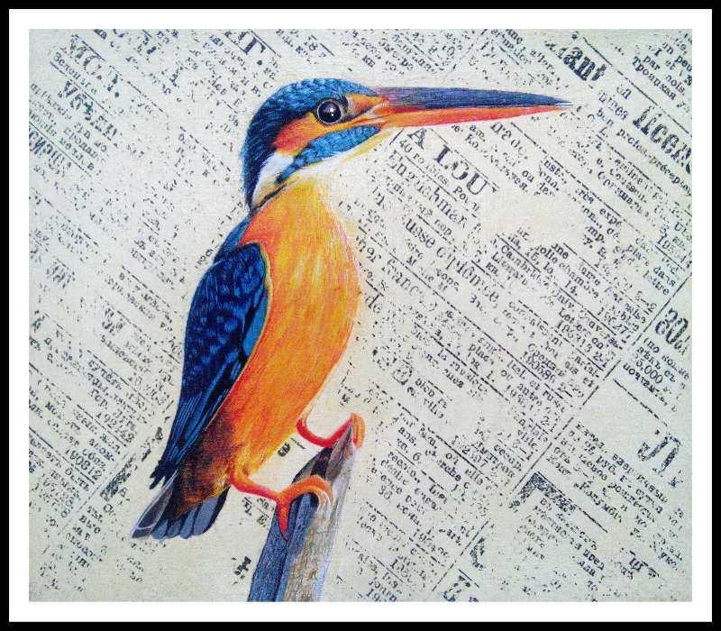 Kingfisher, egg tempera on paper, Nikunj Mory, 2014.
