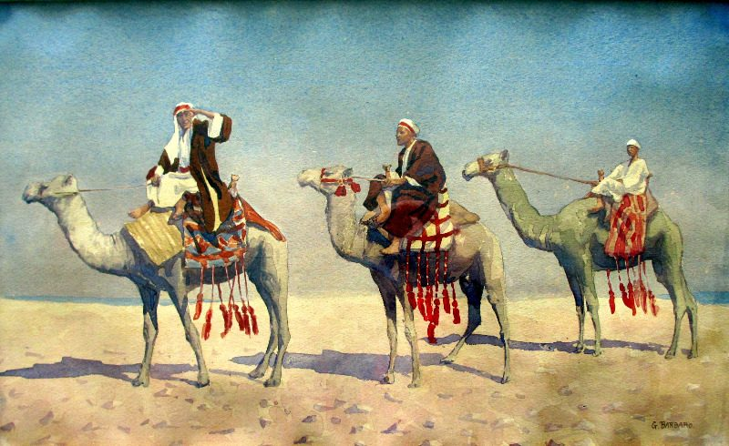 G. Barbaro, 3 Camels study, watercolour on paper. c1910.