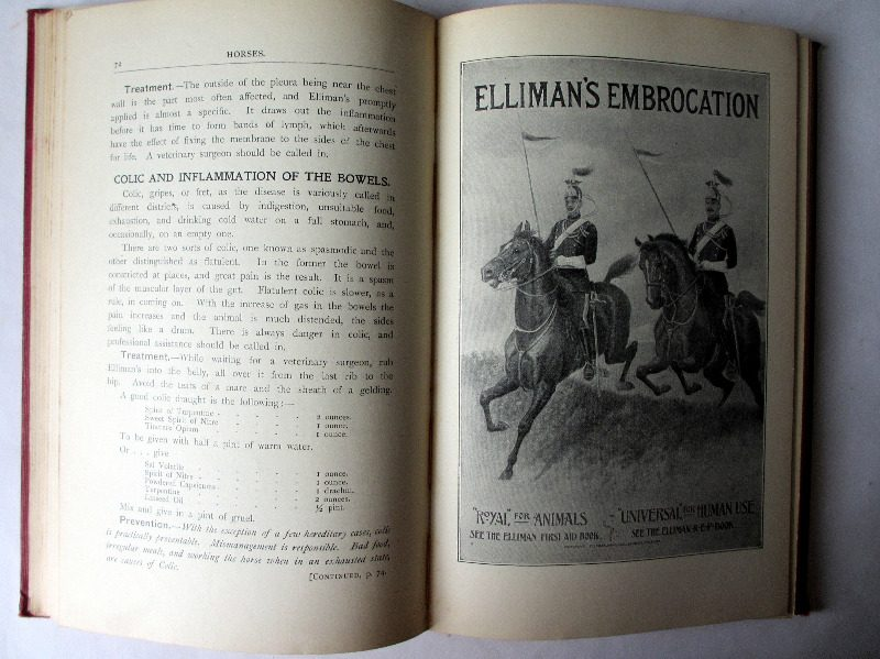 Elliman's Embrocation, 1906, 5th Edition. Detail.