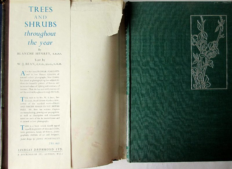 Trees and Shrubs by Blanche Henrey, 1944. 1st Edition. Front board.