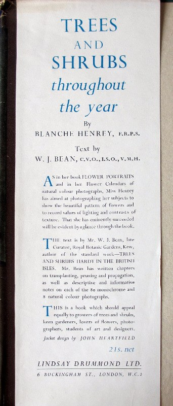 Trees and Shrubs by Blanche Henrey, 1944. 1st Edition. Front board. DJ front fold.