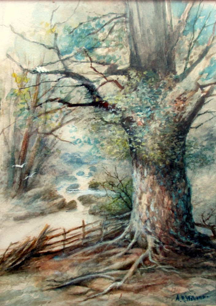 A Woody Glen, North Wales, watercolour and gouache, signed A.R. Williams. c
