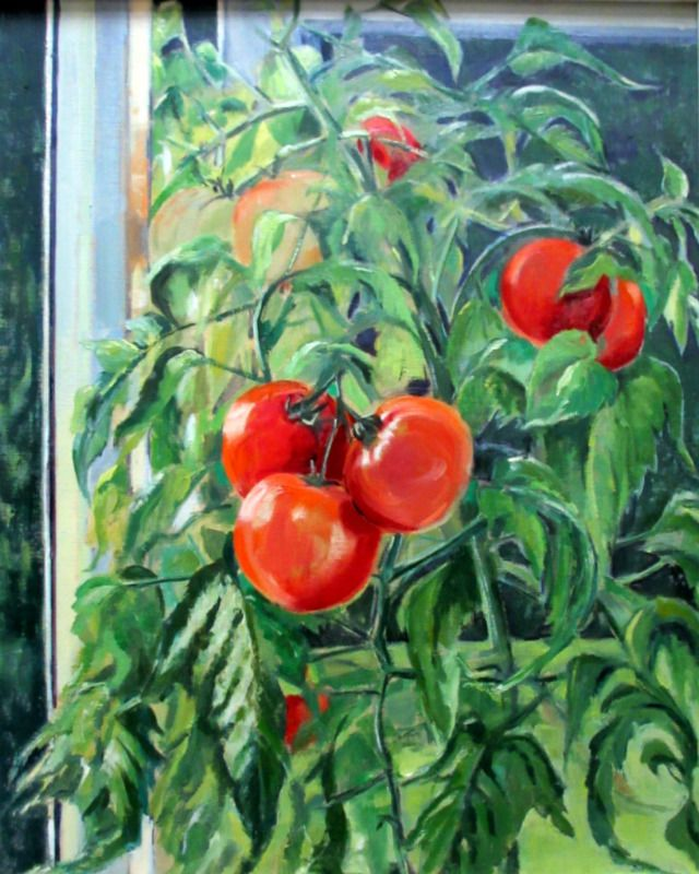 Tomato Summer, oil on board, signed Jean Clark, c1969.