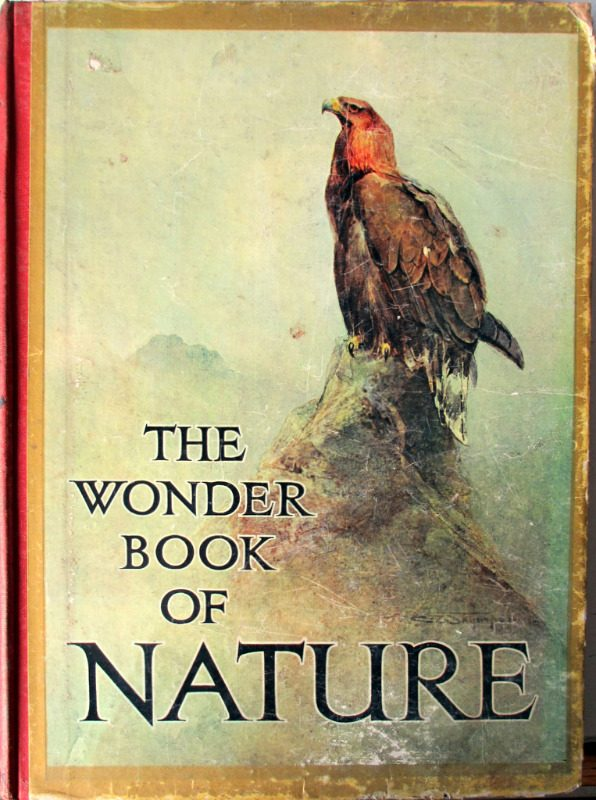 The Wonder Book of Nature for Boys and Girls, Edited by Harry Golding, 7th Edition. c1927.