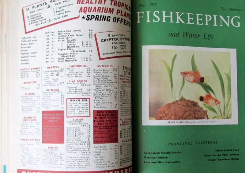 Fishkeeping and Water Life Nov 1957 - Dec 1958 bound volume (14 months). Details.