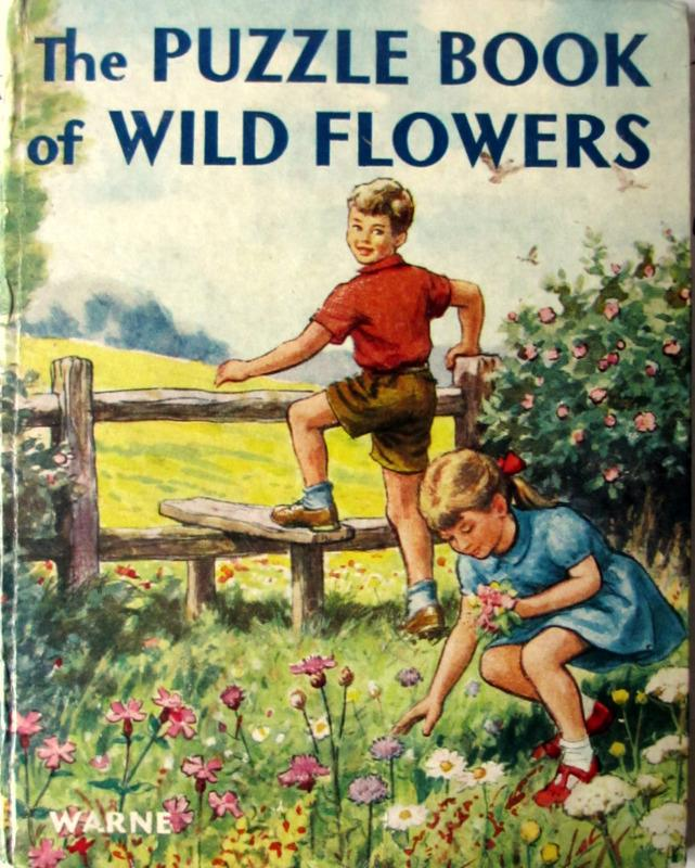 The Puzzle Book of Wild Flowers Patricia Baines, illustrated by B. Butler, 1963.