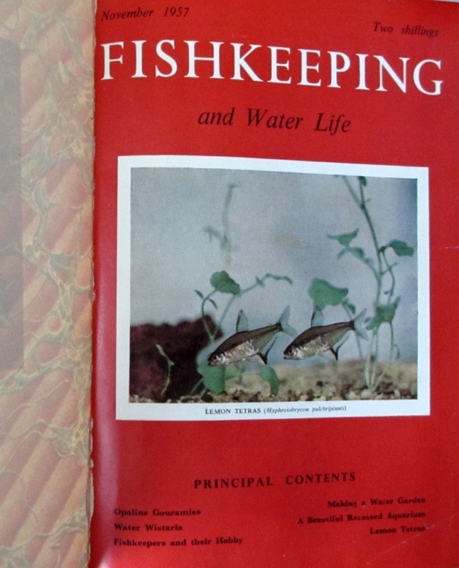 Fishkeeping and Water Life Nov 1957 - Dec 1958 bound volume (14 months).