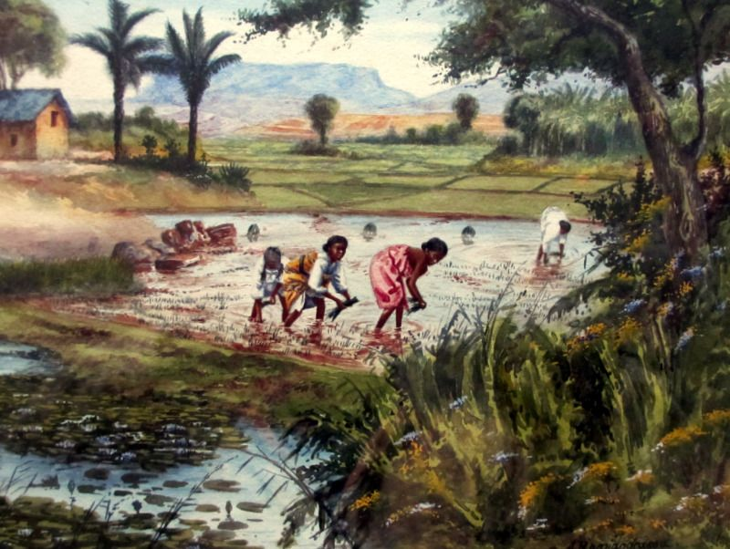 Replanting Rice in Malagasy Village Scene, watercolour, signed A. Ramiandrasoa c1910. Detail.