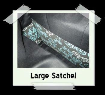 Satchel1d