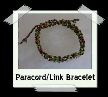 paralink_jamaica2