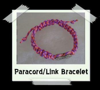 paralink_pink2