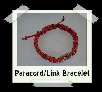 paralink_red2