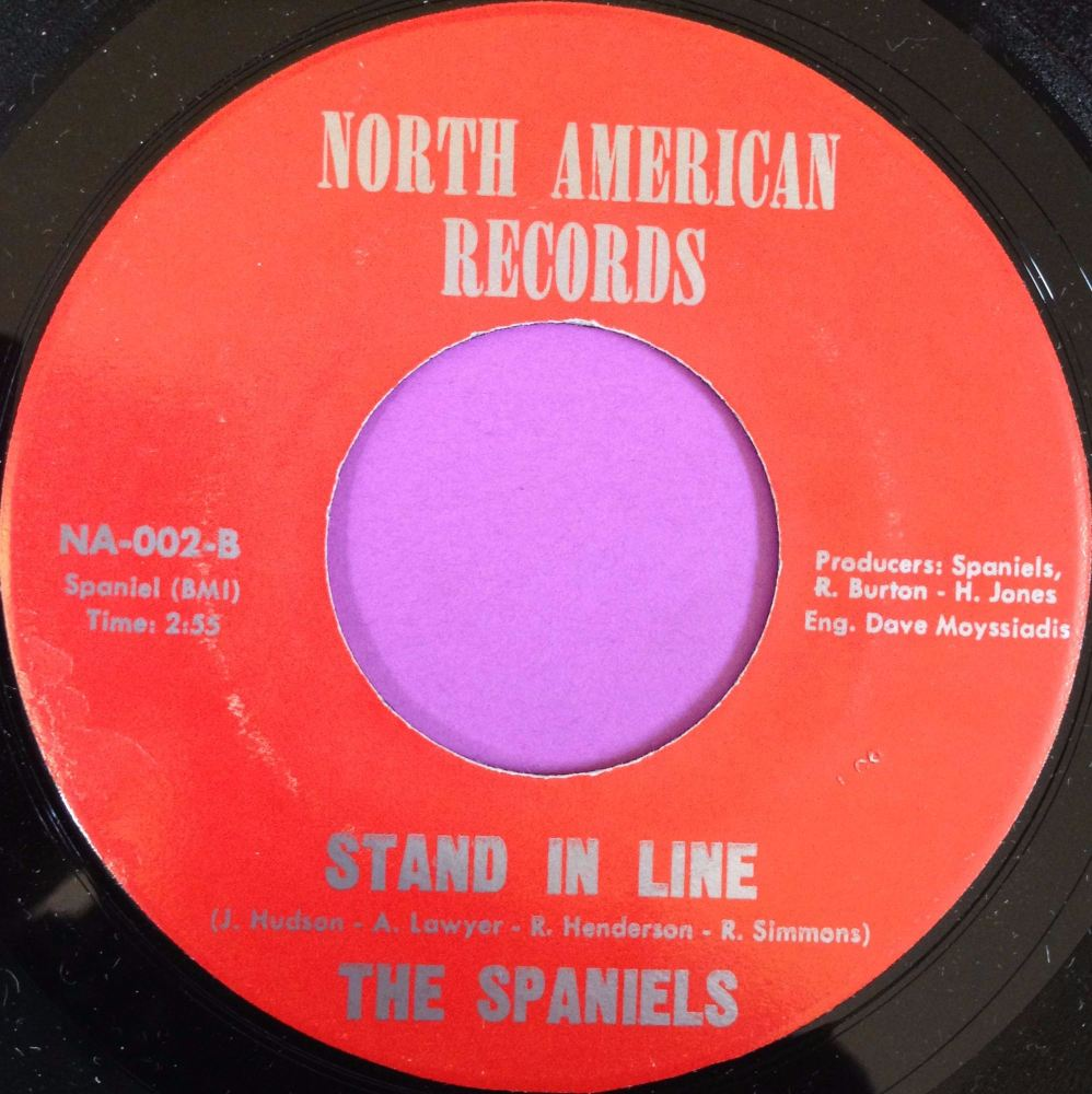 Spaniels-Stand in line-North American M-