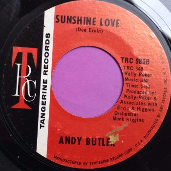 Andy Butler-Sunshine love-TRC E+