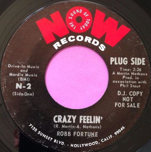 Robb Fortune-Crazy feelin-Now E+