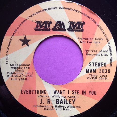 J.R Bailey-Everything I see in you-Mam E+