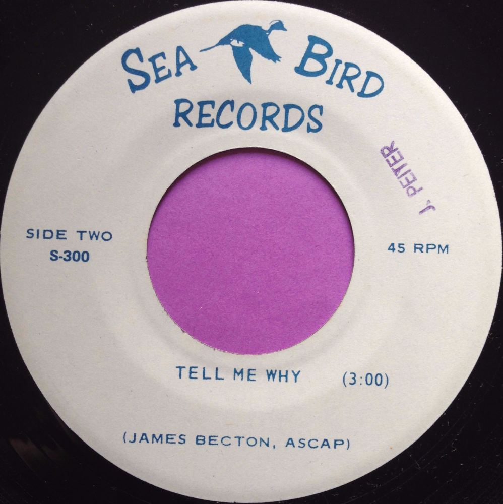 James Becton-Tell me why-Sea bird E+