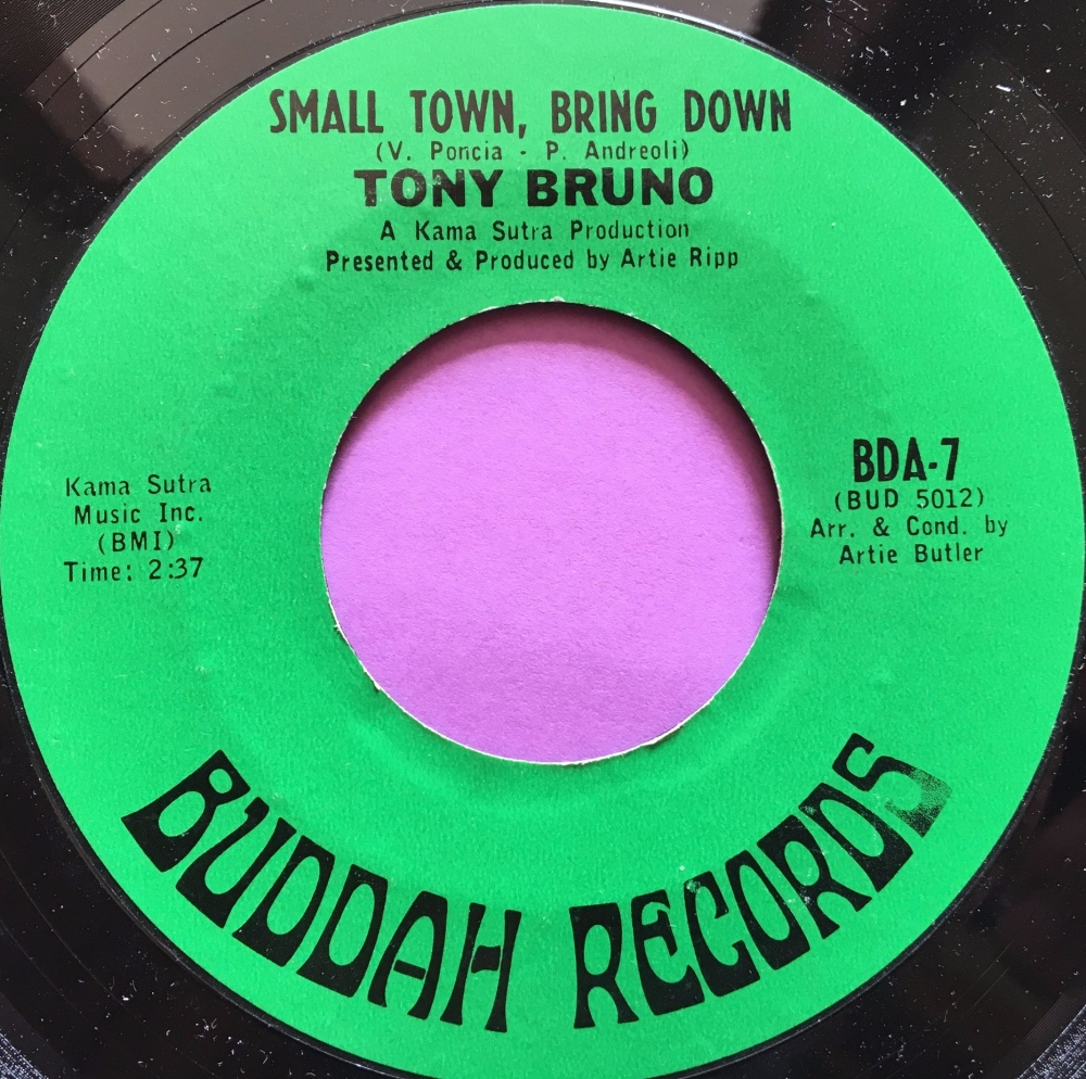 Tony Bruno-Small town bring down-Buddah E+