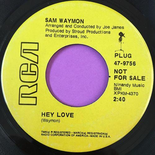Sam Waymon-Hey love-RCA Demo E+