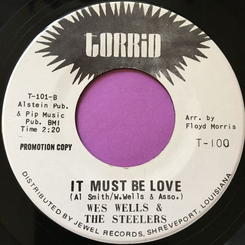 Wes Wells & Steelers-It must be love-Torrid WD E+
