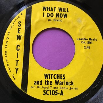 Witches and the Warlock-What will I do now-Sew City E+