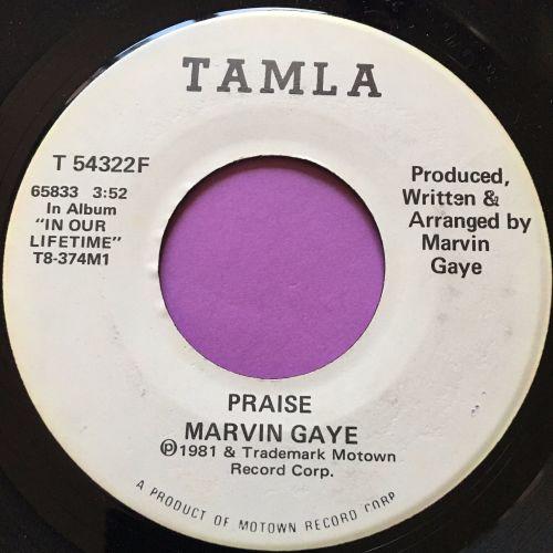 Marvin Gaye-Praise-Tamla WD M-