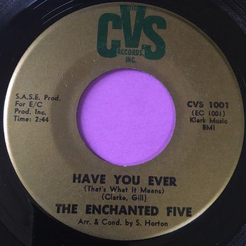 Enchanted Five-Have you ever-CVS E+