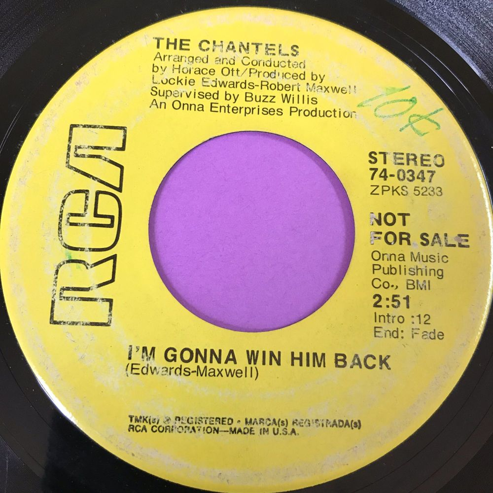 Chantels-I'm gonna win him back-RCA demo E-