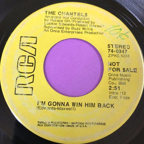 Chantels-I'm gonna win him back-RCA demo E-