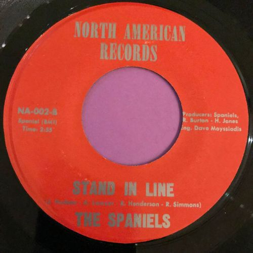 Spaniels-Stand in line-North American E+