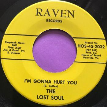Lost Soul-I'm gonna hurt you-Raven M-