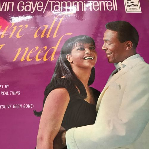 Marvin and Tammi-You're all I need-UK Motown LP E