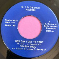 Sharon Soul-How can I get to you-Wild duce E+