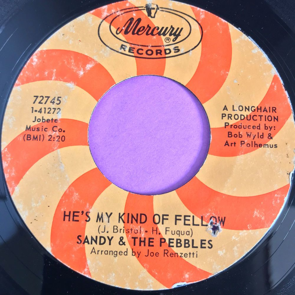 Sandy & The Pebbles-He's my kind of fellow-Mercury E