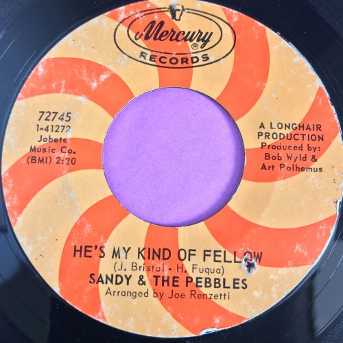 Sandy & The Pebbles-He's my kind of fellow-Mercury E