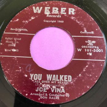 Joe Vina-You walked-Weber vg+
