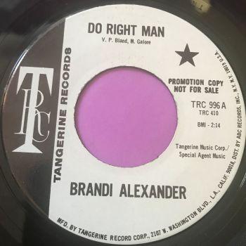 Brandi Alexander-Do right man-TRC WD E+