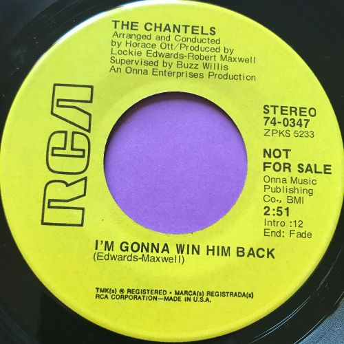 Chantels-I'm gonna win him back-RCA demo E+