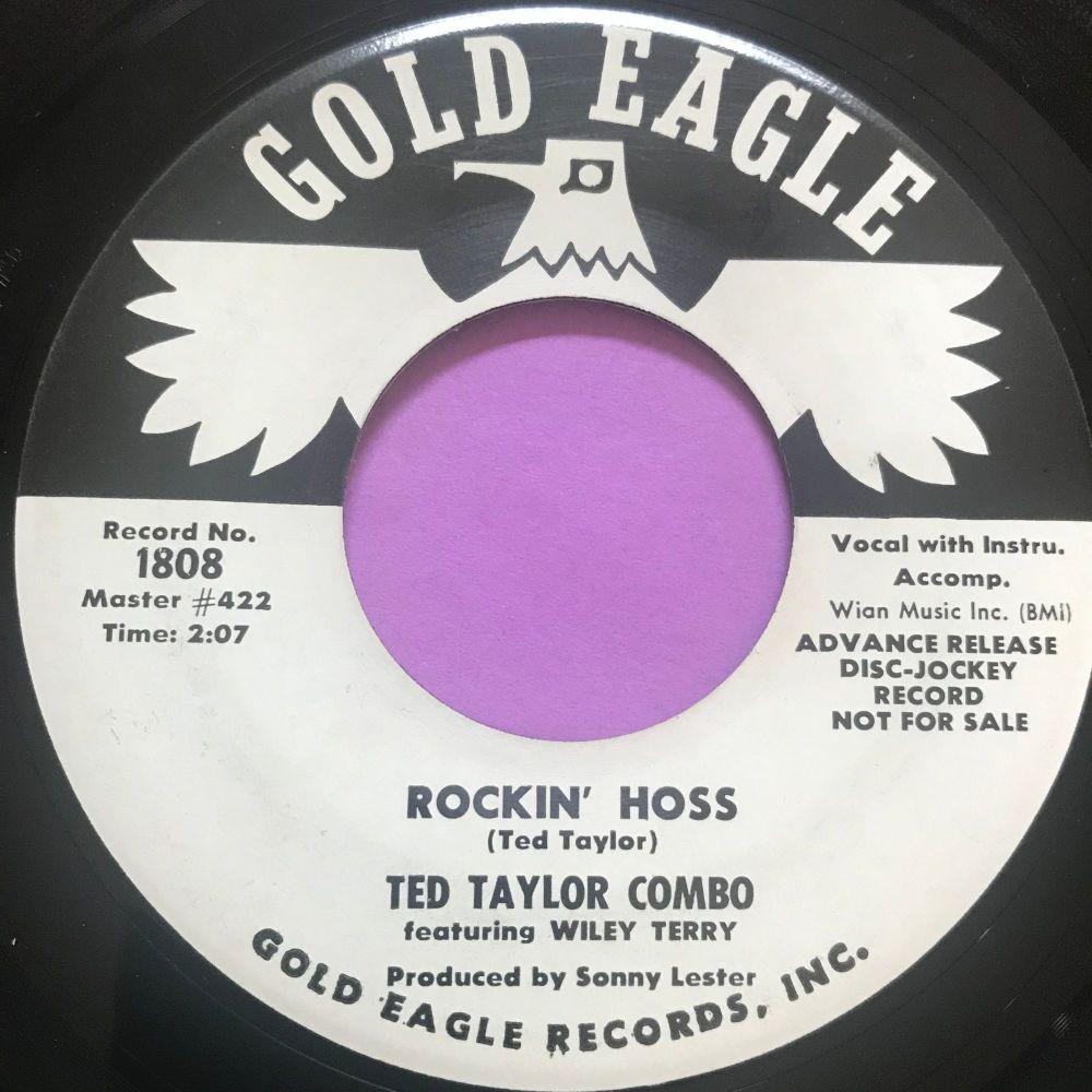 Ted Taylor-Rockin' hoss-Gold eagle WD E+