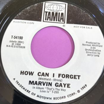 Marvin Gaye-How can I forget-Tamla WD E+